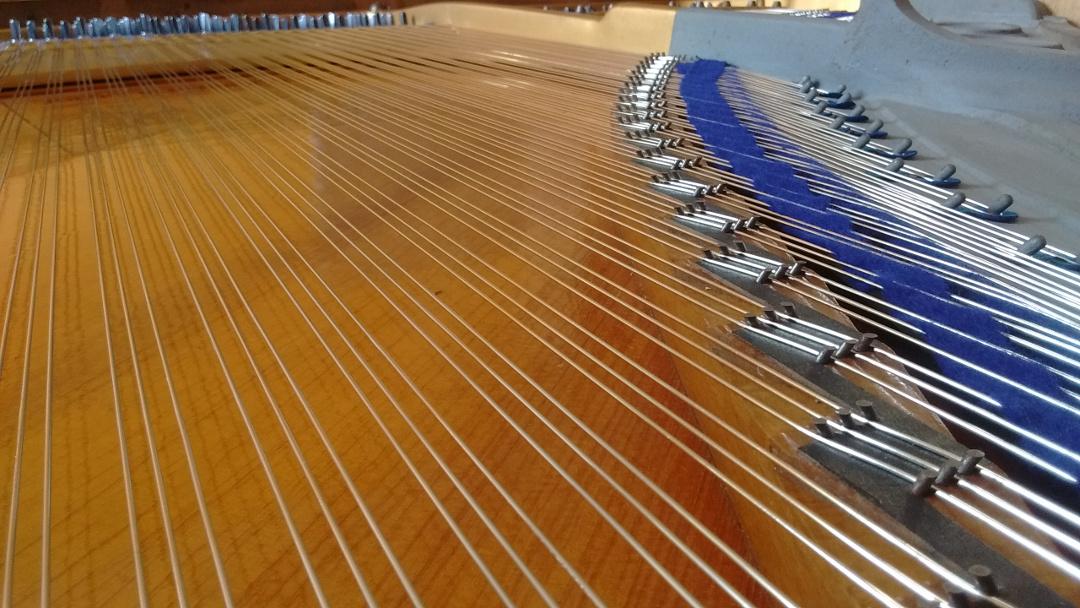 Cordes en acier nickelé Stephen Paulello