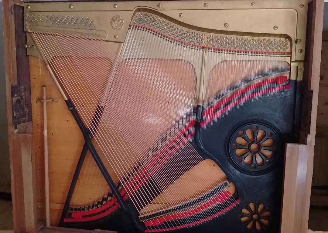 Structure harmonique avec cordage et chevillage neufs