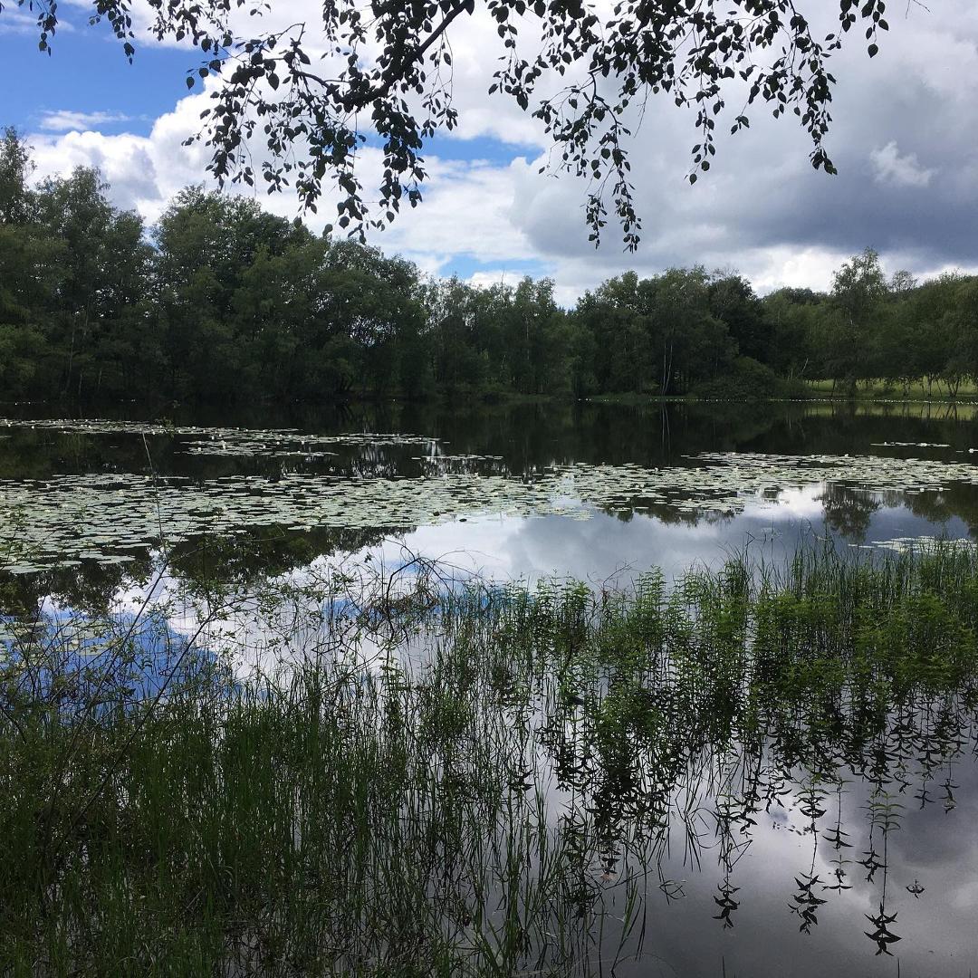 Région des 1000 étangs