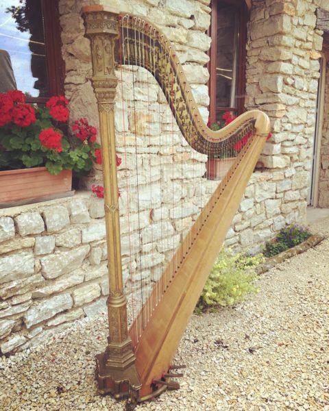 Harpe classique Erard location